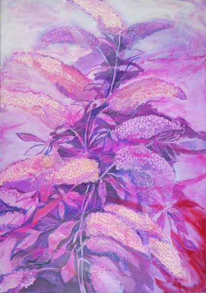 Schmetterlingsflieder_70x100_2020